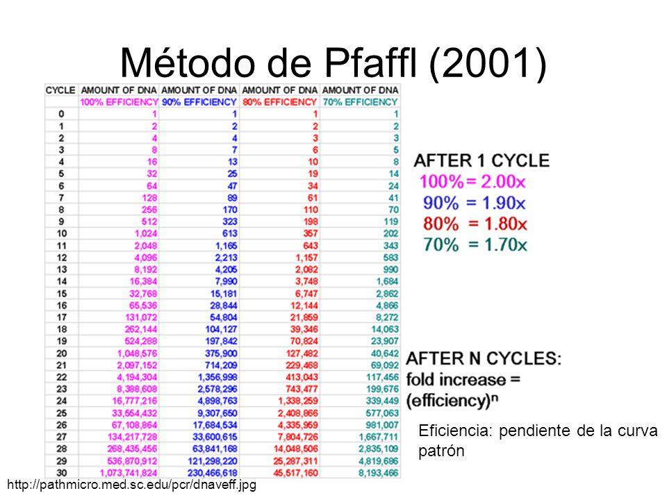 Método de Pfaffl (2001) Curso PCR 2011-2012 http://pathmicro.med.sc.edu/pcr/dnaveff.jpg Eficiencia: pendiente de la curva patrón