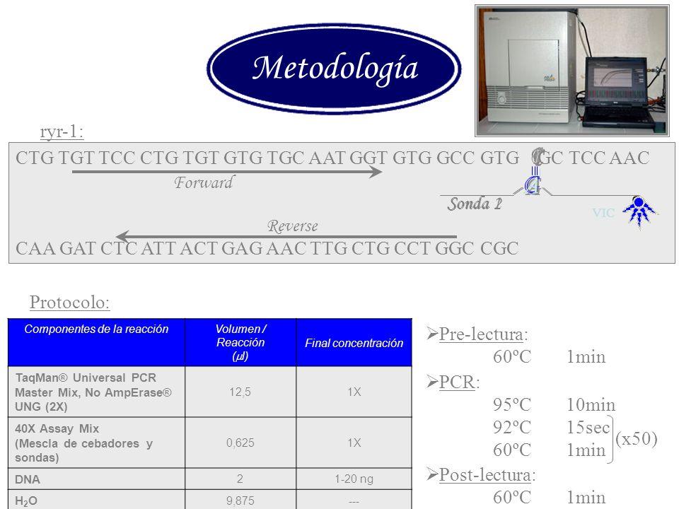 Curso PCR 2011-2012 CTG TGT TCC CTG TGT GTG TGC AAT GGT GTG GCC GTG GC TCC AAC CAA GAT CTC ATT ACT GAG AAC TTG CTG CCT GGC CGC Sonda 1 Metodología Reverse Forward ryr-1: Protocolo: Componentes de la reacciónVolumen / Reacción ( l) Final concentración TaqMan® Universal PCR Master Mix, No AmpErase® UNG (2X) 12,51X 40X Assay Mix (Mescla de cebadores y sondas) 0,6251X DNA 21-20 ng H2OH2O 9,875--- Total 25 Pre-lectura: 60ºC 1min Post-lectura: 60ºC 1min PCR: 95ºC 10min 92ºC 15sec 60ºC 1min (x50) Sonda 2 FAM VIC