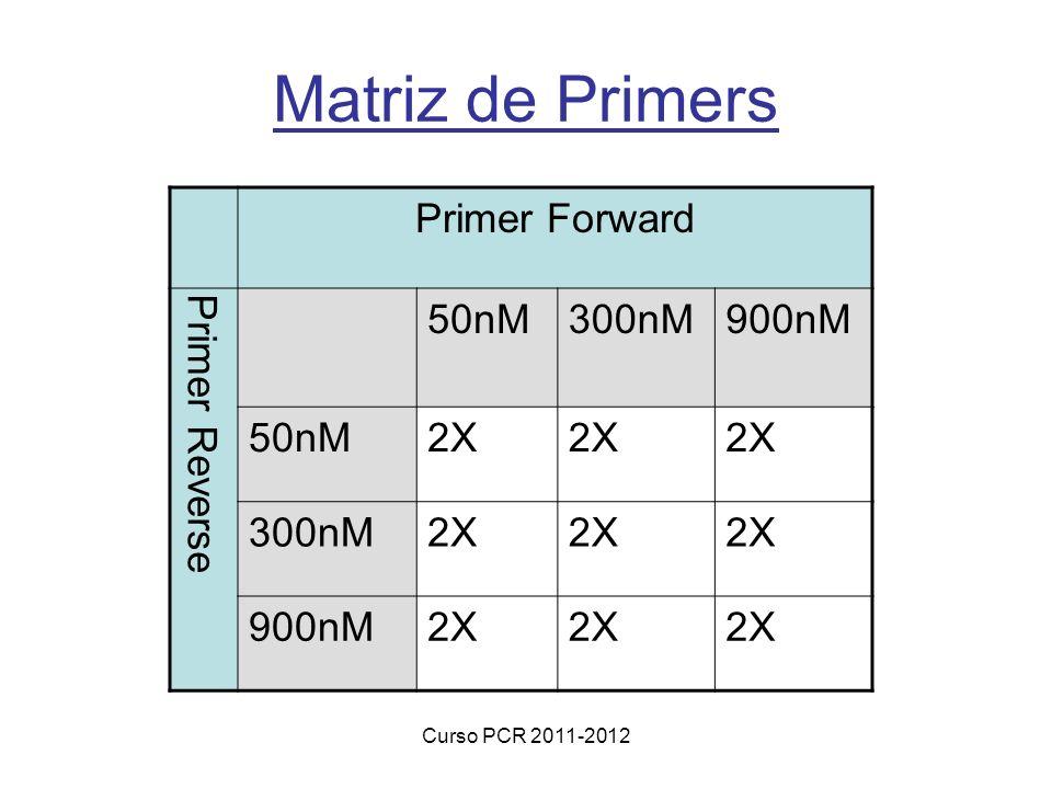 Curso PCR 2011-2012 Matriz de Primers Primer Forward Primer Reverse 50nM300nM900nM 50nM2X 300nM2X 900nM2X