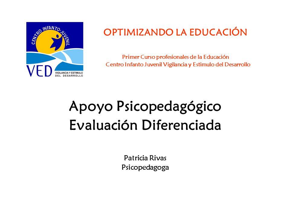 OPTIMIZANDO LA EDUCACIÓN Primer Curso profesionales de la Educación Centro Infanto Juvenil Vigilancia y Estimulo del Desarrollo Apoyo Psicopedagógico
