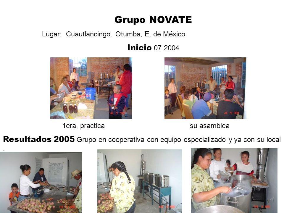 MIMEX Fabricante, Exportador y vendedor de Miel de Maguey.