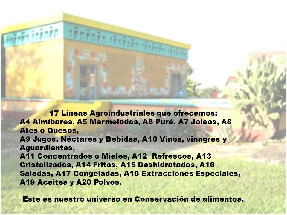17 Líneas Agroindustriales que ofrecemos: A4 Almíbares, A5 Mermeladas, A6 Puré, A7 Jaleas, A8 Ates o Quesos, A9 Jugos, Néctares y Bebidas, A10 Vinos,