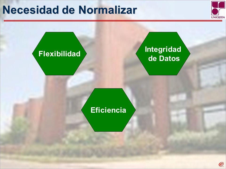 Necesidad de Normalizar Flexibilidad Integridad de Datos Eficiencia
