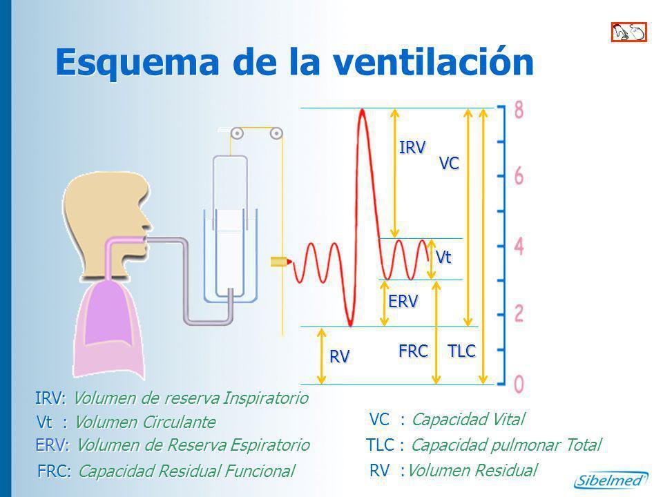 Espirometría La introducción del factor tiempo y de la velocidad en la maniobra espirométrica aporta información sobre cómo sale el aire de los pulmones y el flujo que representa.