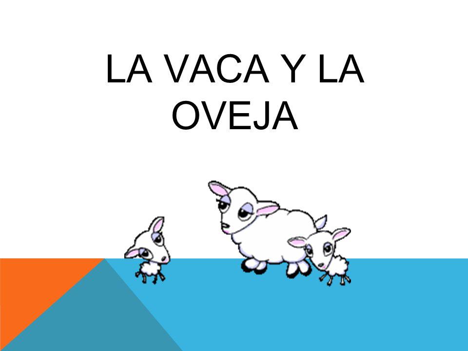 LA VACA Y LA OVEJA
