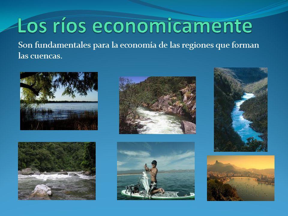Son fundamentales para la economía de las regiones que forman las cuencas.