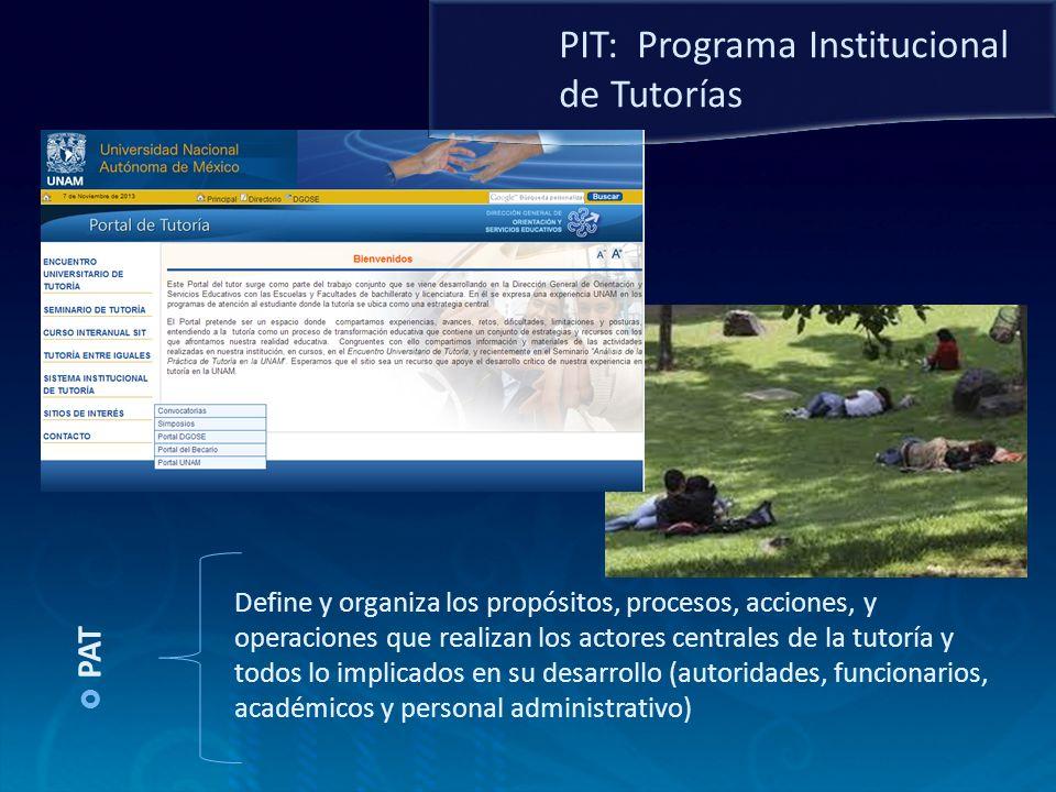 PAT Define y organiza los propósitos, procesos, acciones, y operaciones que realizan los actores centrales de la tutoría y todos lo implicados en su d