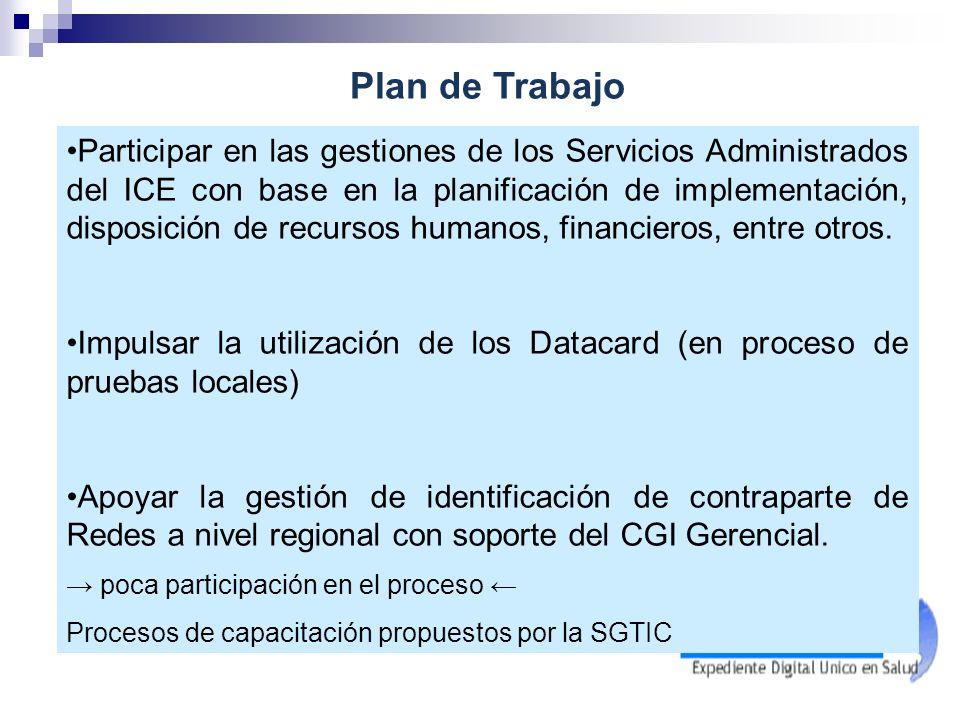 Participar en las gestiones de los Servicios Administrados del ICE con base en la planificación de implementación, disposición de recursos humanos, fi