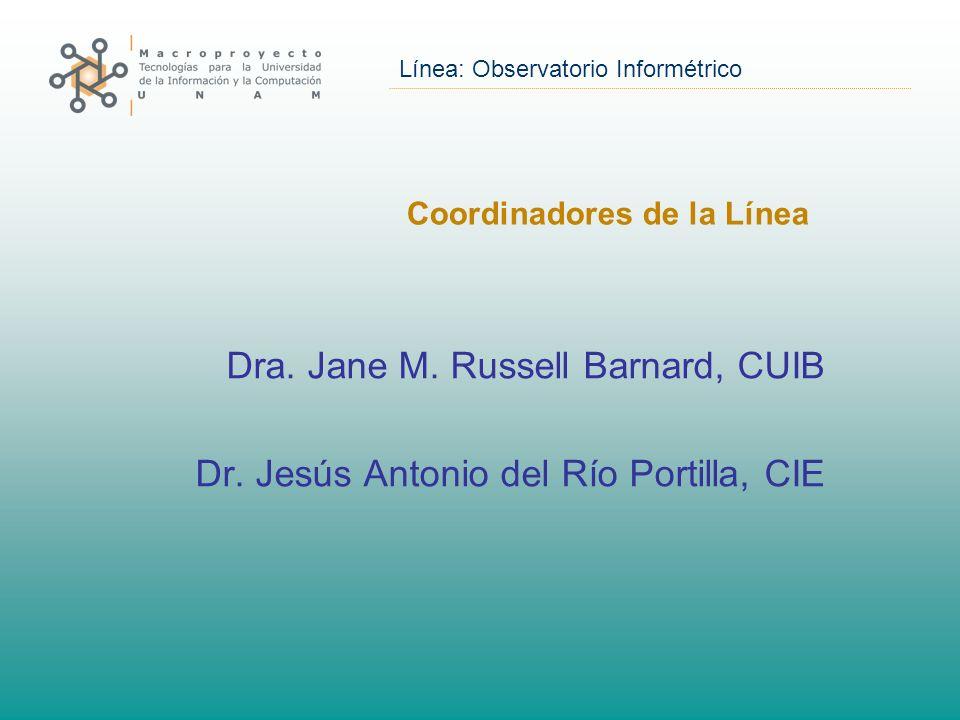 Línea: Observatorio Informétrico Coordinadores de la Línea Dra.