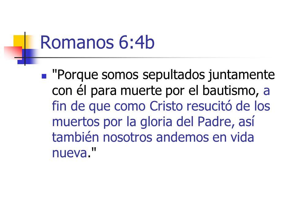 Romanos 6:4b
