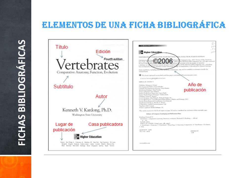 FICHAS BIBLIOGRÁFICAS ELEMENTOS DE UNA FICHA BIBLIOGRÁFICA Al hacer una bibliografía según el Manual de la APA, comienza en una página aparte en la parte superior de esta, y al centro escribe: