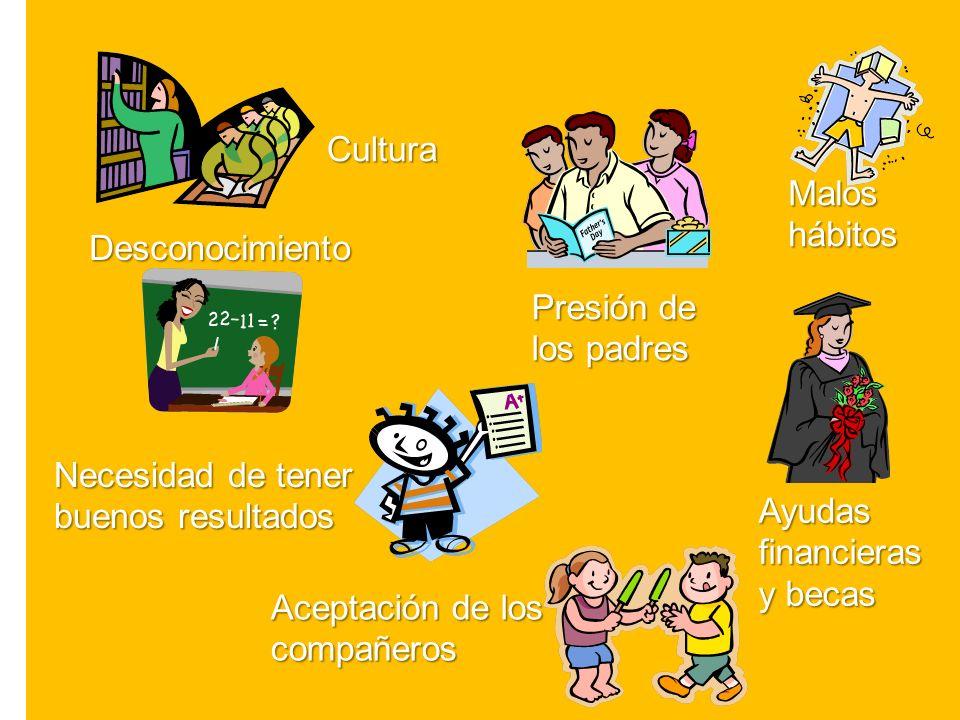Cultura Presión de los padres Aceptación de los compañeros Ayudas financieras y becas Necesidad de tener buenos resultados Desconocimiento Maloshábitos
