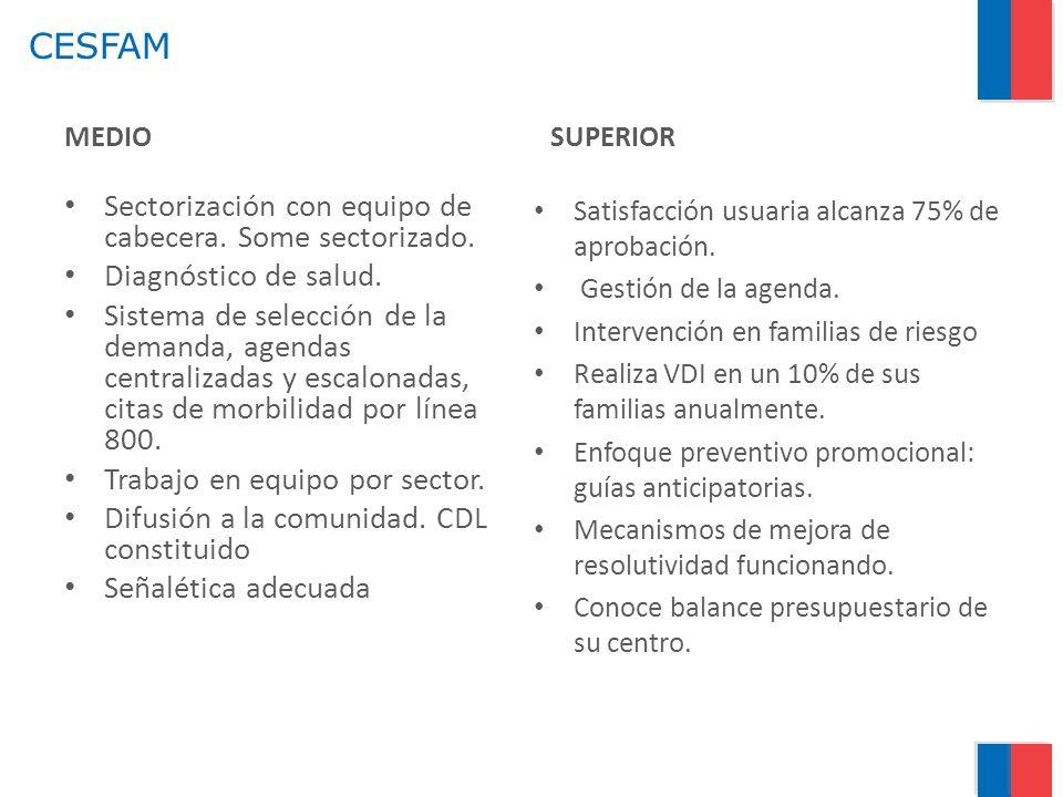 CESFAM MEDIO Sectorización con equipo de cabecera. Some sectorizado. Diagnóstico de salud. Sistema de selección de la demanda, agendas centralizadas y
