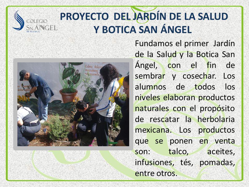 PROYECTO DEL JARDÍN DE LA SALUD Y BOTICA SAN ÁNGEL Fundamos el primer Jardín de la Salud y la Botica San Ángel, con el fin de sembrar y cosechar. Los