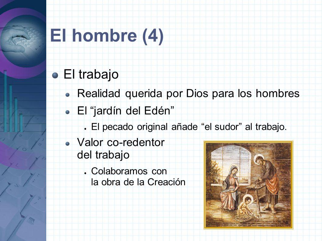 El hombre (4) El trabajo Realidad querida por Dios para los hombres El jardín del Edén El pecado original añade el sudor al trabajo.