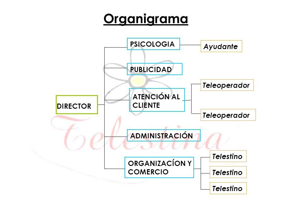 Organigrama DIRECTOR PSICOLOGIA PUBLICIDAD ATENCIÓN AL CLIENTE ADMINISTRACIÓN ORGANIZACÍON Y COMERCIO Ayudante Teleoperador Telestino