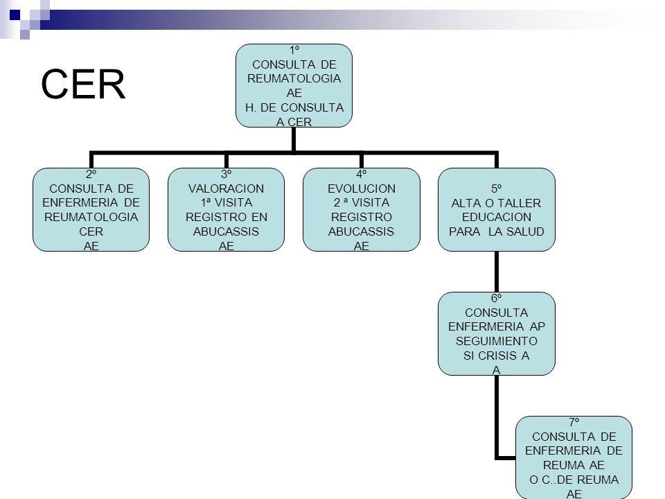 CER 1º CONSULTA DE REUMATOLOGIA AE H.