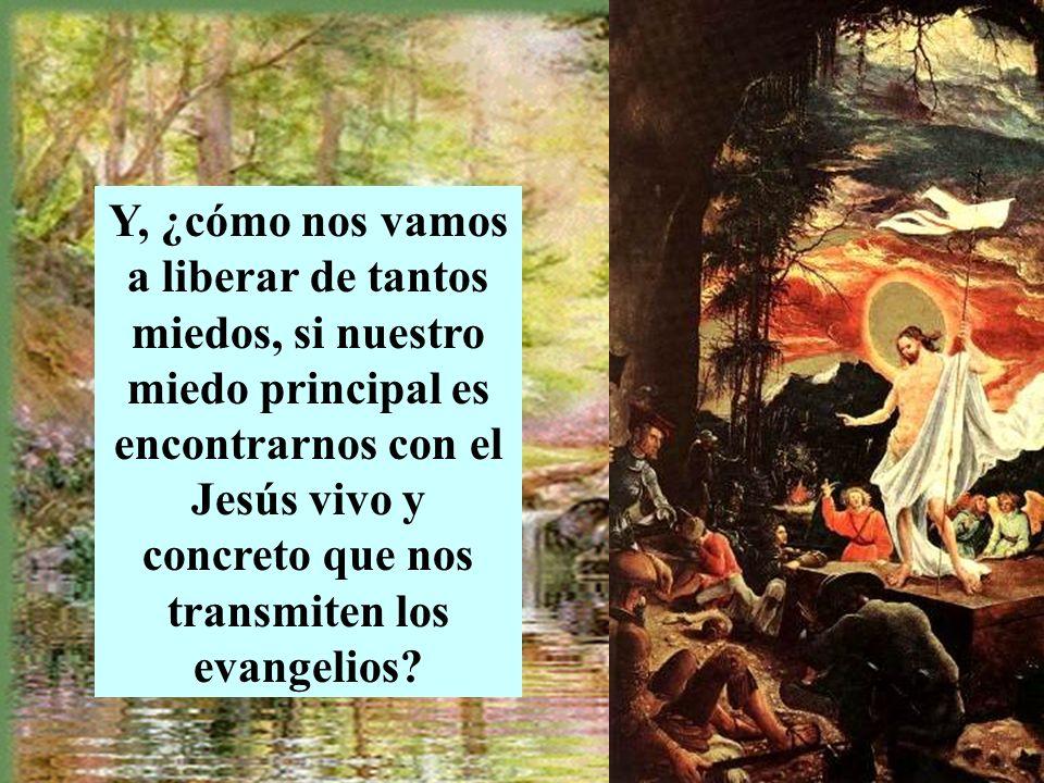 Y, ¿cómo nos vamos a liberar de tantos miedos, si nuestro miedo principal es encontrarnos con el Jesús vivo y concreto que nos transmiten los evangelios?