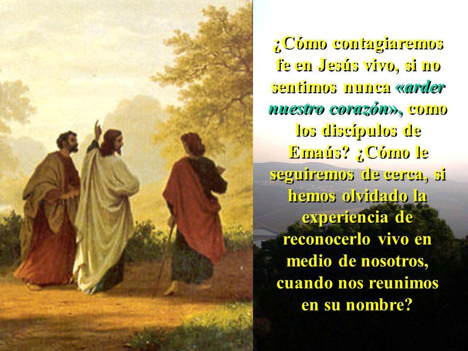 ¿Cómo contagiaremos fe en Jesús vivo, si no sentimos nunca «arder nuestro corazón», como los discípulos de Emaús.