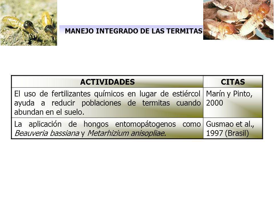 MANEJO INTEGRADO DE LAS TERMITAS ACTIVIDADESCITAS El uso de fertilizantes químicos en lugar de estiércol ayuda a reducir poblaciones de termitas cuand