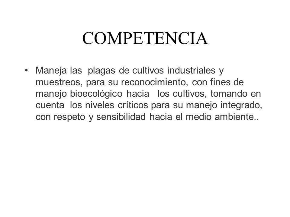 COMPETENCIA Maneja las plagas de cultivos industriales y muestreos, para su reconocimiento, con fines de manejo bioecológico hacia los cultivos, toman