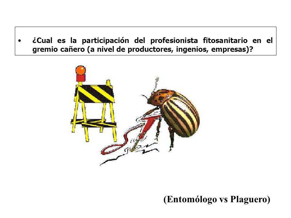 ¿Cual es la participación del profesionista fitosanitario en el gremio cañero (a nivel de productores, ingenios, empresas)? (Entomólogo vs Plaguero)