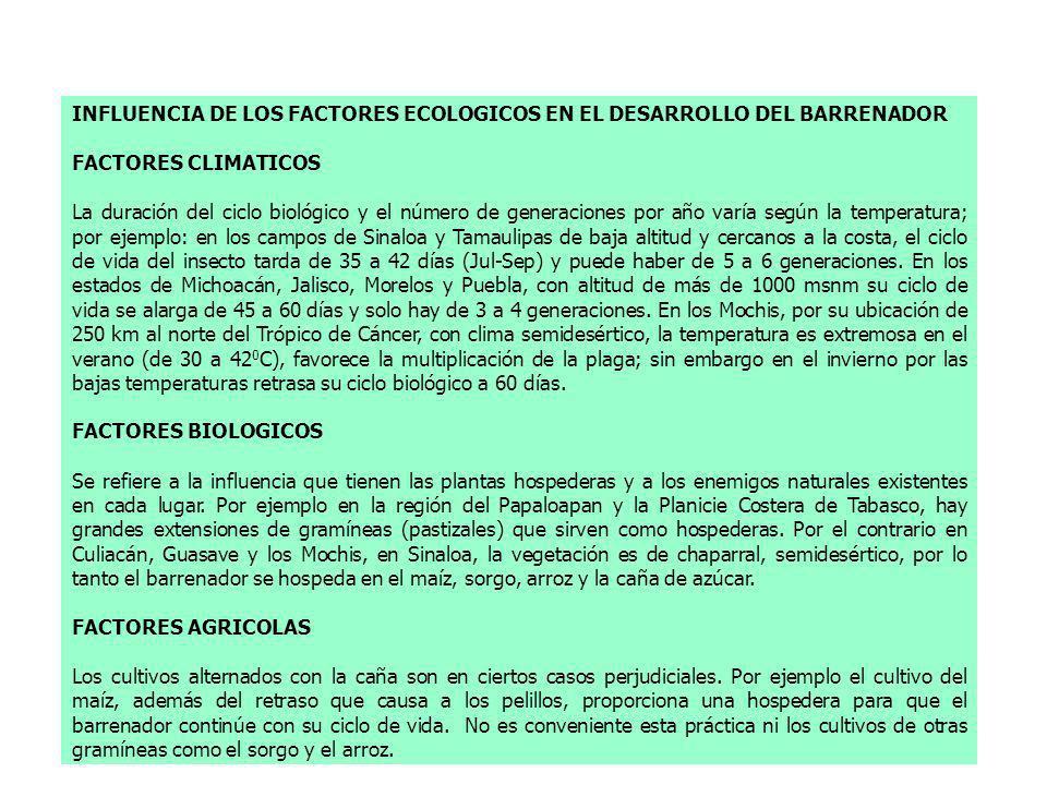 INFLUENCIA DE LOS FACTORES ECOLOGICOS EN EL DESARROLLO DEL BARRENADOR FACTORES CLIMATICOS La duración del ciclo biológico y el número de generaciones