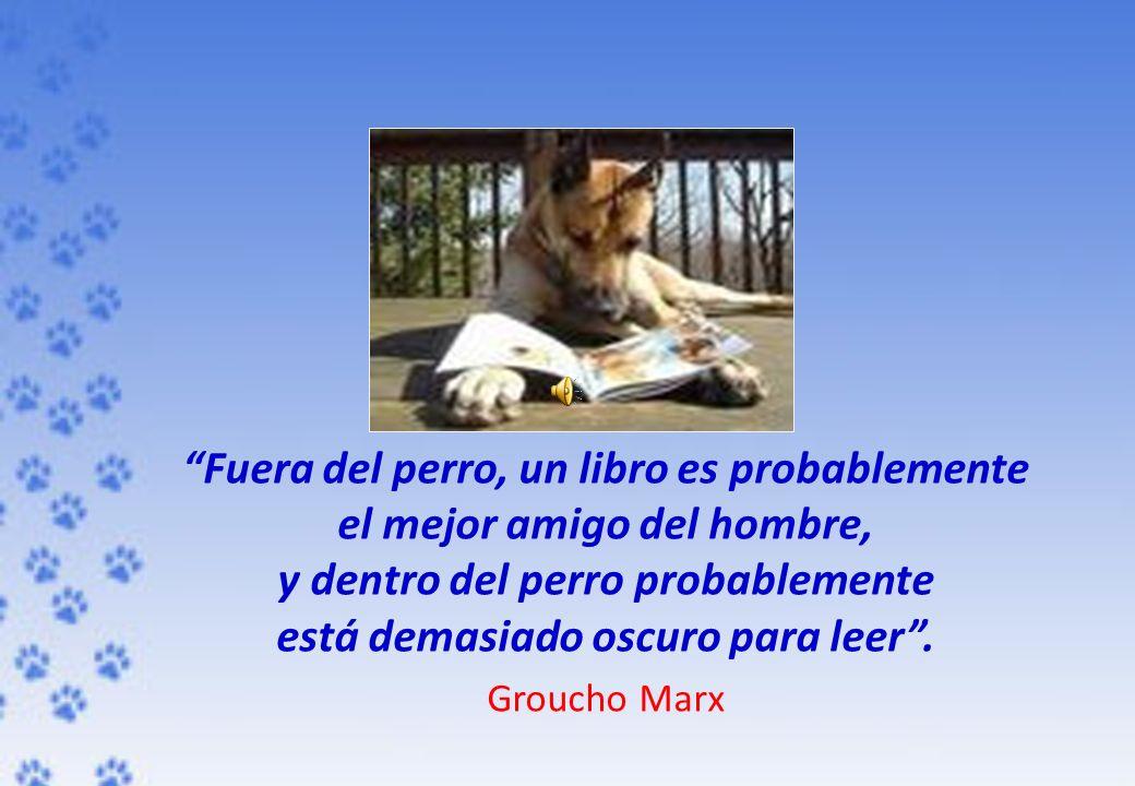 Fuera del perro, un libro es probablemente el mejor amigo del hombre, y dentro del perro probablemente está demasiado oscuro para leer. Groucho Marx