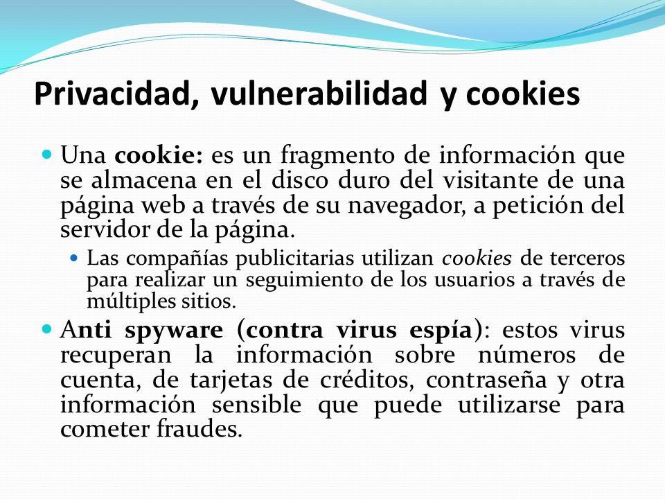 Privacidad, vulnerabilidad y cookies Una cookie: es un fragmento de información que se almacena en el disco duro del visitante de una página web a tra