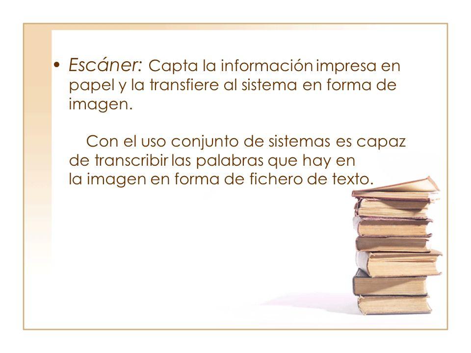 Escáner: Capta la información impresa en papel y la transfiere al sistema en forma de imagen.