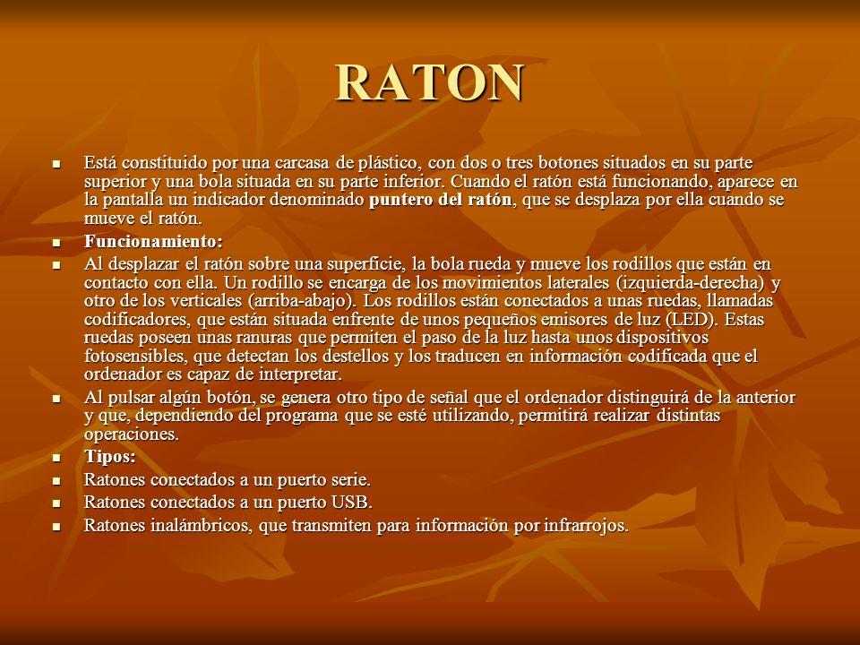 RATON Está constituido por una carcasa de plástico, con dos o tres botones situados en su parte superior y una bola situada en su parte inferior. Cuan