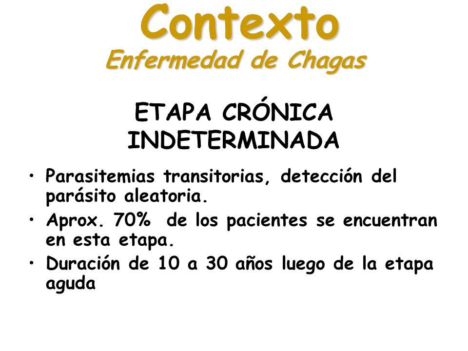 ETAPA CRÓNICA INDETERMINADA Parasitemias transitorias, detección del parásito aleatoria. Aprox. 70% de los pacientes se encuentran en esta etapa. Dura