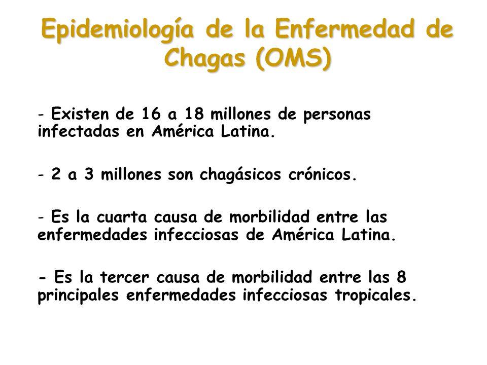 Epidemiología de la Enfermedad de Chagas (OMS) - Existen de 16 a 18 millones de personas infectadas en América Latina. - 2 a 3 millones son chagásicos