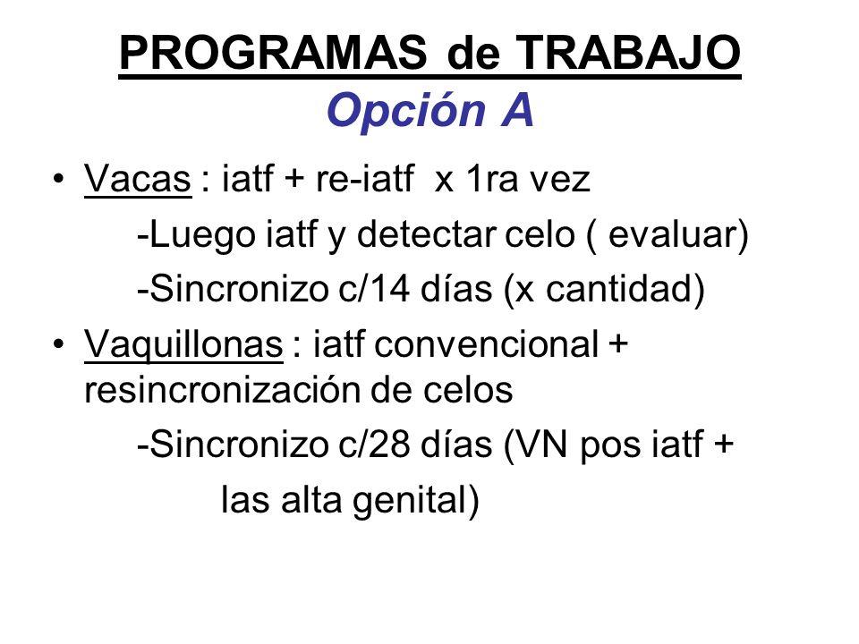 PROGRAMAS de TRABAJO Opción A Vacas : iatf + re-iatf x 1ra vez -Luego iatf y detectar celo ( evaluar) -Sincronizo c/14 días (x cantidad) Vaquillonas :