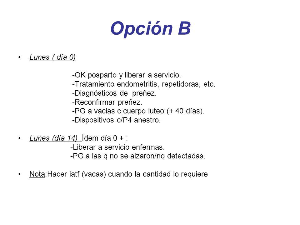 Opción B Lunes ( día 0) -OK posparto y liberar a servicio. -Tratamiento endometritis, repetidoras, etc. -Diagnósticos de preñez. -Reconfirmar preñez.