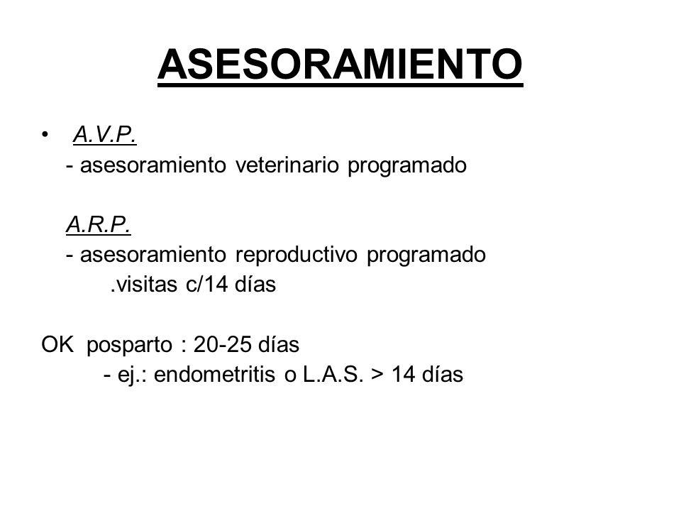 ASESORAMIENTO A.V.P. - asesoramiento veterinario programado A.R.P. - asesoramiento reproductivo programado.visitas c/14 días OK posparto : 20-25 días