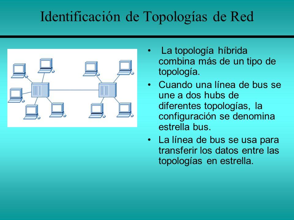 Identificación de Topologías de Red La topología híbrida combina más de un tipo de topología. Cuando una línea de bus se une a dos hubs de diferentes