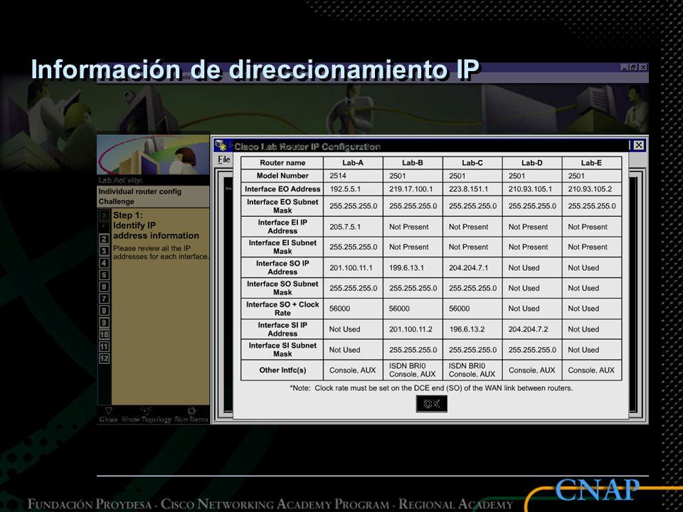 Información de direccionamiento IP