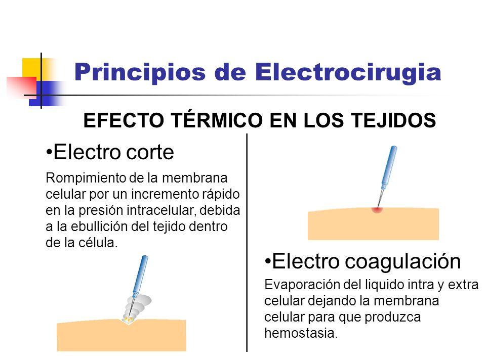 EFECTO TÉRMICO EN LOS TEJIDOS Electro corte Principios de Electrocirugia Electro coagulación Rompimiento de la membrana celular por un incremento rápi