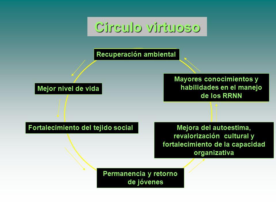 Circulo Circulo vicioso Degradación ambiental Pobreza Desestabilización social Pérdida de autoestima, de riqueza cultural y de capacidad organizativa