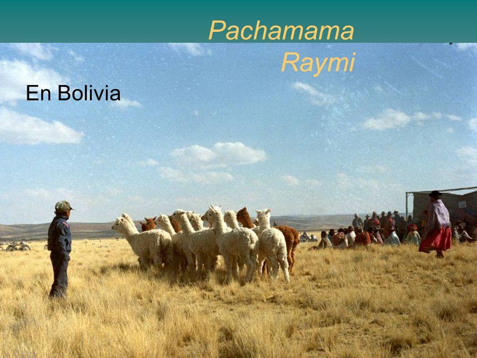 Pachamama Raymi En Bolivia