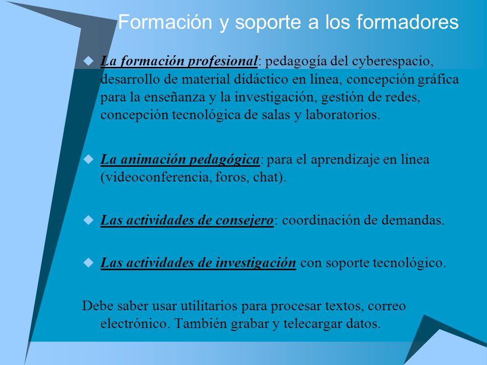 Formación y soporte a los formadores La formación profesional: pedagogía del cyberespacio, desarrollo de material didáctico en línea, concepción gráfi