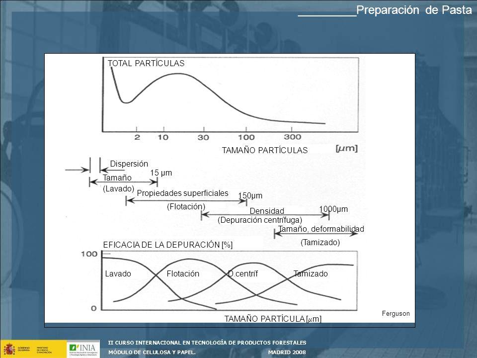TOTAL PARTÍCULAS TAMAÑO PARTÍCULAS Dispersión Tamaño (Lavado) Propiedades superficiales (Flotación) Densidad (Depuración centrífuga) Tamaño, deformabilidad (Tamizado) EFICACIA DE LA DEPURACIÓN [%] TAMAÑO PARTÍCULA [ m] Lavado Flotación D.centríf Tamizado 15 µm 150µm 1000µm Ferguson _________Preparación de Pasta