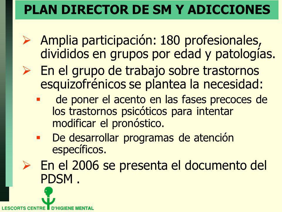 PLAN DIRECTOR DE SM Y ADICCIONES Amplia participación: 180 profesionales, divididos en grupos por edad y patologías. En el grupo de trabajo sobre tras