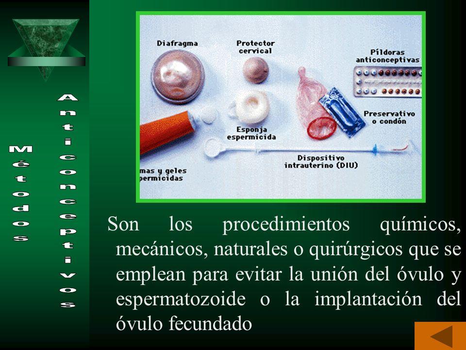 Métodos anticonceptivos: procedimientos encaminados a evitar la unión de los gametos o células sexuales o la implantación del óvulo fecundado. Espermi