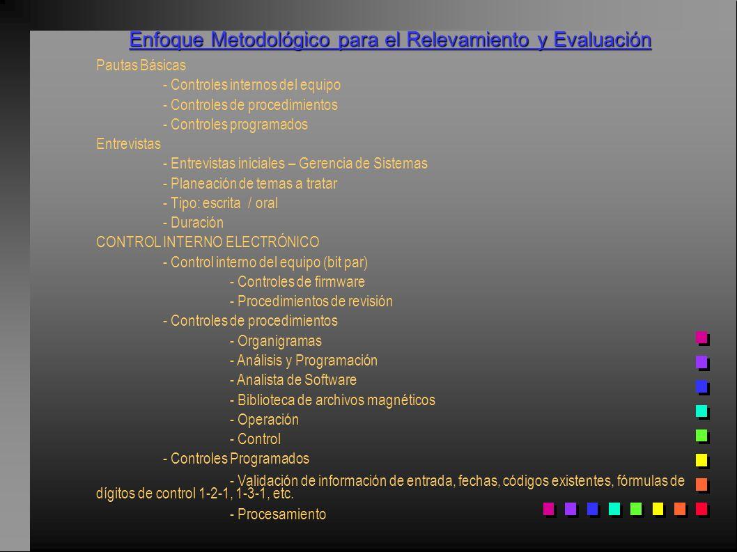 Enfoque Metodológico para el Relevamiento y Evaluación Pautas Básicas - Controles internos del equipo - Controles de procedimientos - Controles progra