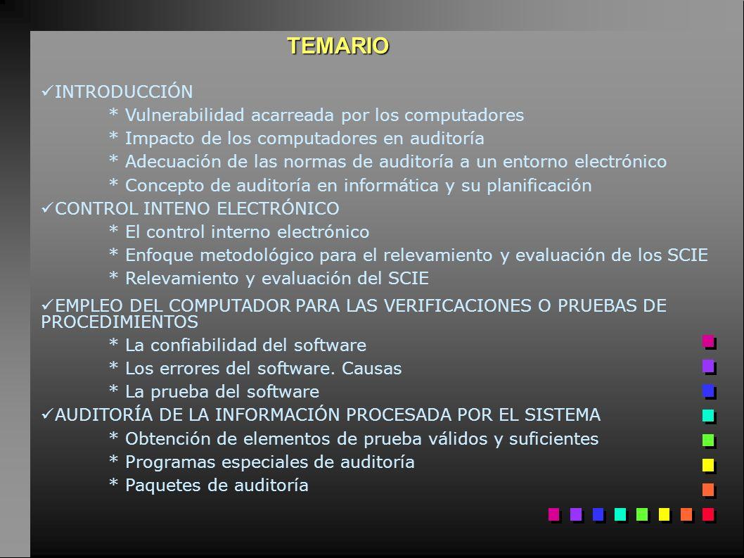 Consecuencias de la Informatización Empresarial 1.Concentración de la información 2.Falta de registros visibles 3.Posibilidad de alterar los programas y/o la información sin dejar huellas o rastros visibles.