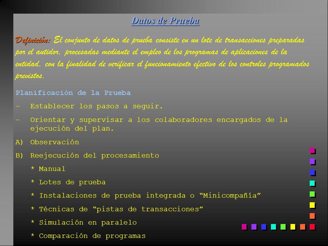 Datos de Prueba Definición: Definición: El conjunto de datos de prueba consiste en un lote de transacciones preparadas por el autidor, procesadas medi