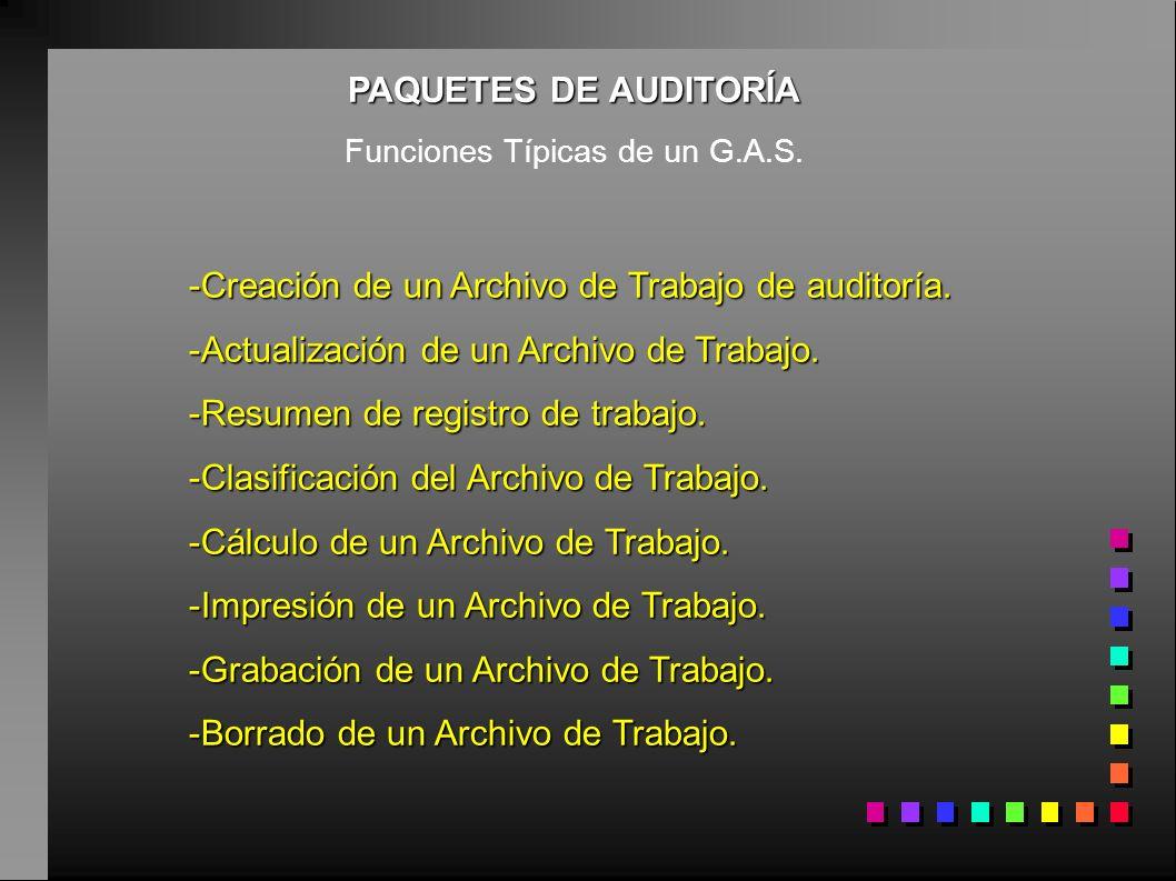 PAQUETES DE AUDITORÍA Funciones Típicas de un G.A.S. -Creación de un Archivo de Trabajo de auditoría. -Actualización de un Archivo de Trabajo. -Resume