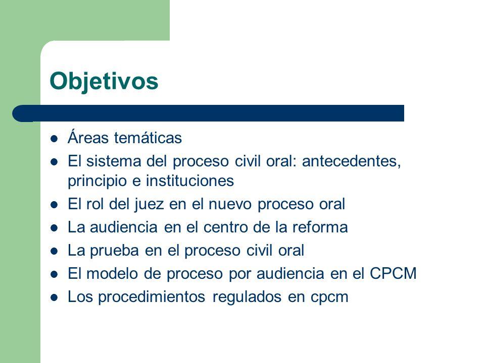Objetivos Áreas temáticas El sistema del proceso civil oral: antecedentes, principio e instituciones El rol del juez en el nuevo proceso oral La audie